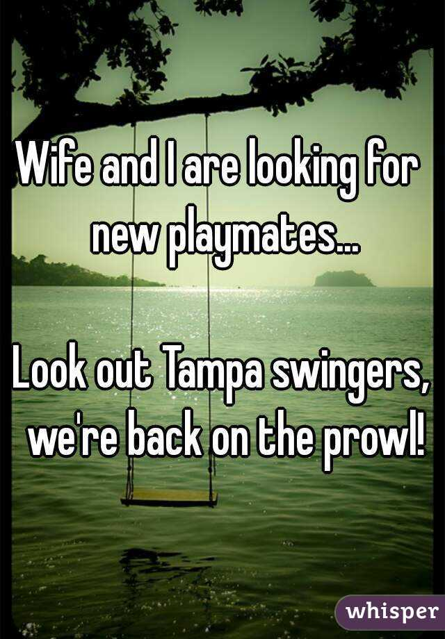 Wife and I are looking for  new playmates...  Look out Tampa swingers, we're back on the prowl!