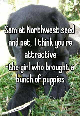 6a67b525ab Sam at Northwest seed and pet
