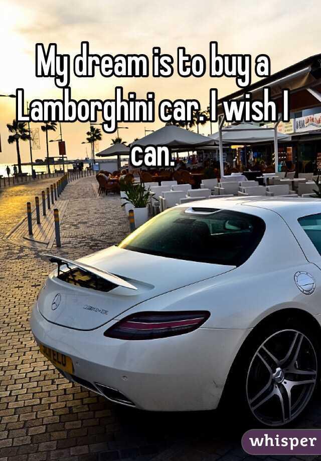 My dream is to buy a Lamborghini car. I wish I can.