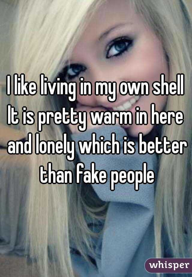 I like living in my own shell It is pretty warm in here and lonely which is better than fake people