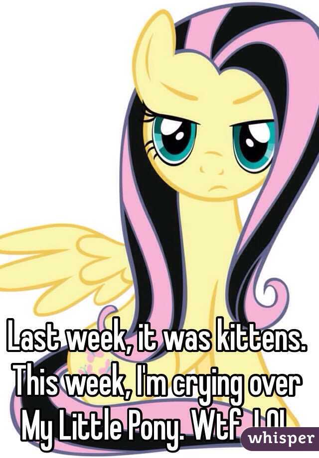 Last week, it was kittens. This week, I'm crying over My Little Pony. Wtf. LOL