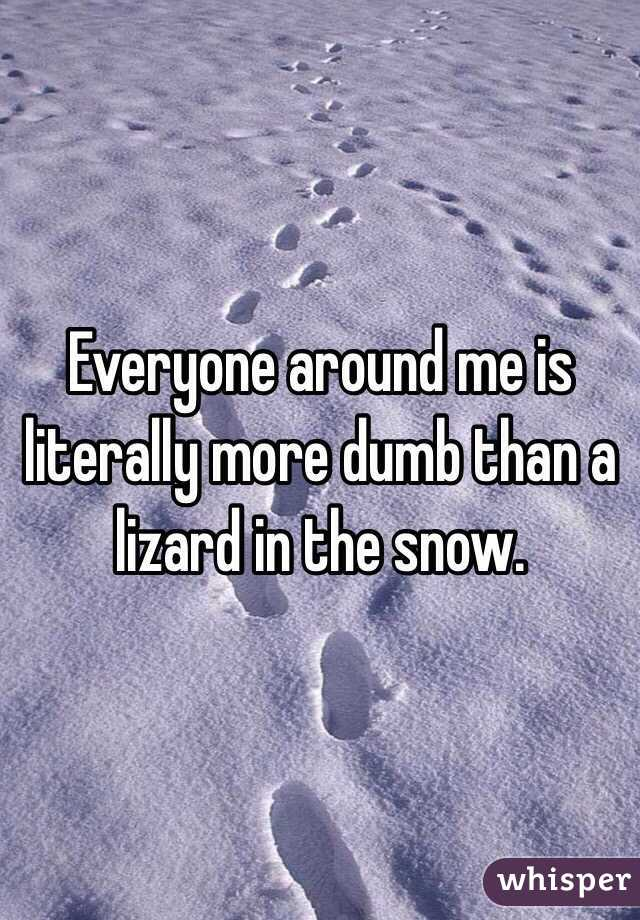 Everyone around me is literally more dumb than a lizard in the snow.