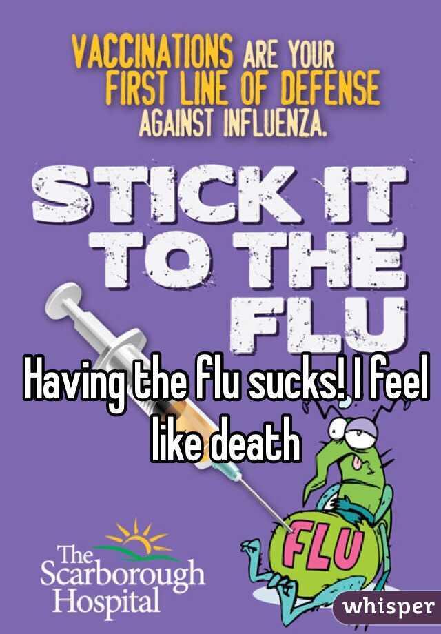 Having the flu sucks! I feel like death