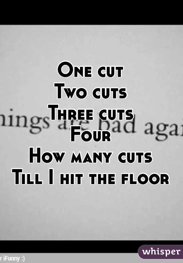 One cut Two cuts Three cuts  Four  How many cuts  Till I hit the floor