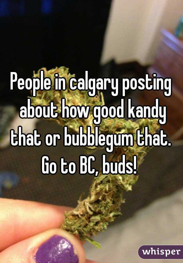 People in calgary posting about how good kandy that or bubblegum that.  Go to BC, buds!