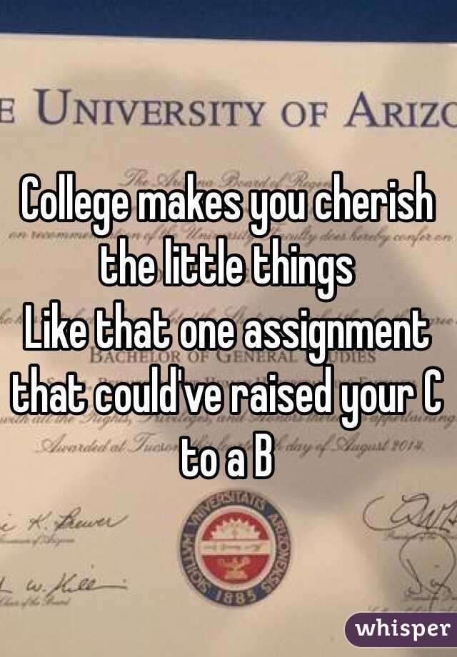 College makes you cherish the little things Like that one assignment that could've raised your C to a B