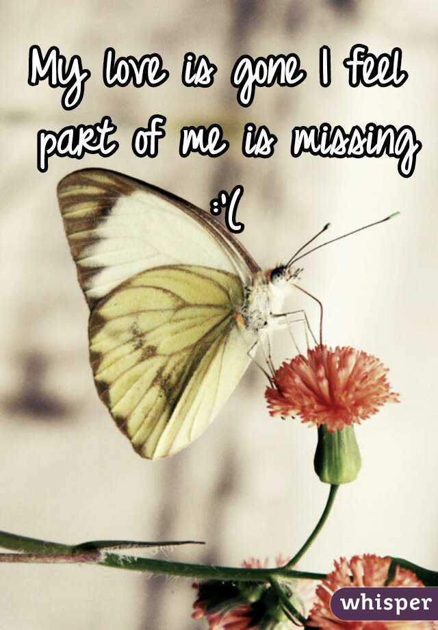 my love is gone i feel part of me is missing