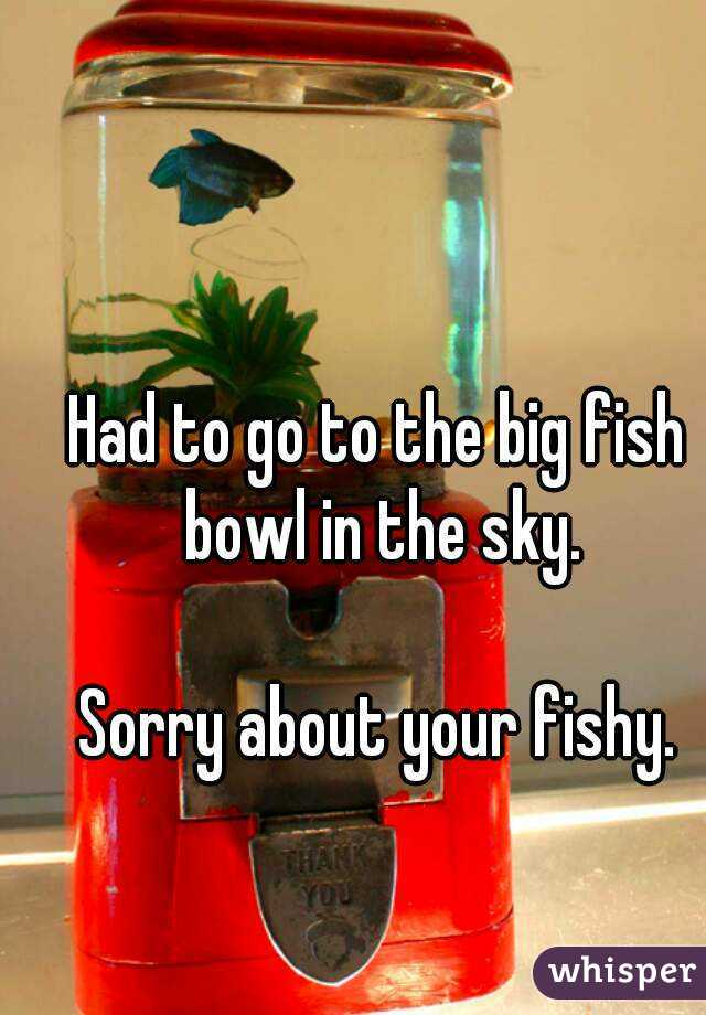 so many fish in the sea but