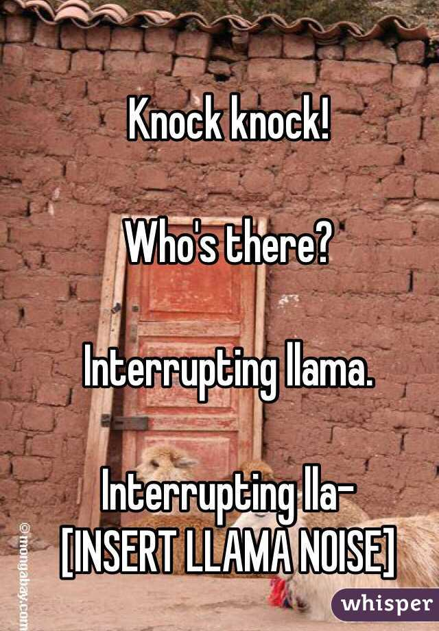 Knock knock!  Who's there?  Interrupting llama.  Interrupting lla-  [INSERT LLAMA NOISE]