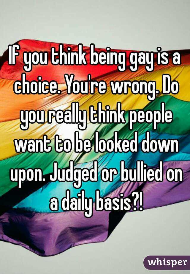 Gay sex free vids