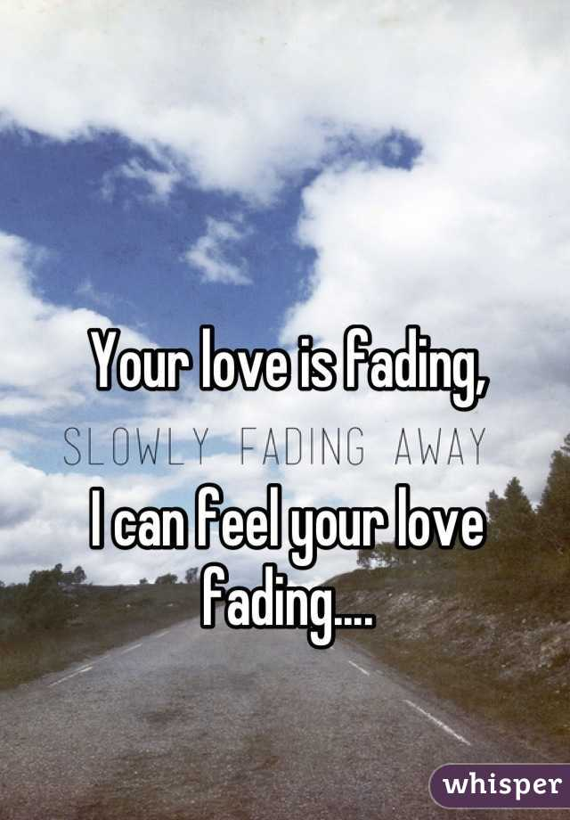 Your Love Is Fading I Can Feel Your Love Fading