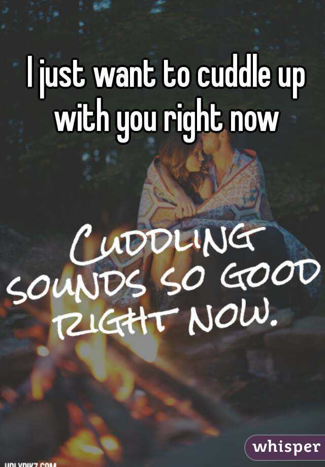 I Really Want To Cuddle You: I Just Want To Cuddle Up With You Right Now