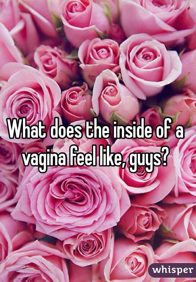 The inside of a vagina #12