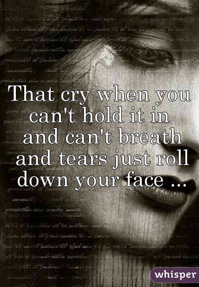 That cry when you can't hold it in  and can't breath and tears just roll down your face ...