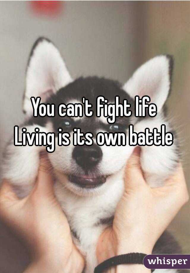 You can't fight life Living is its own battle