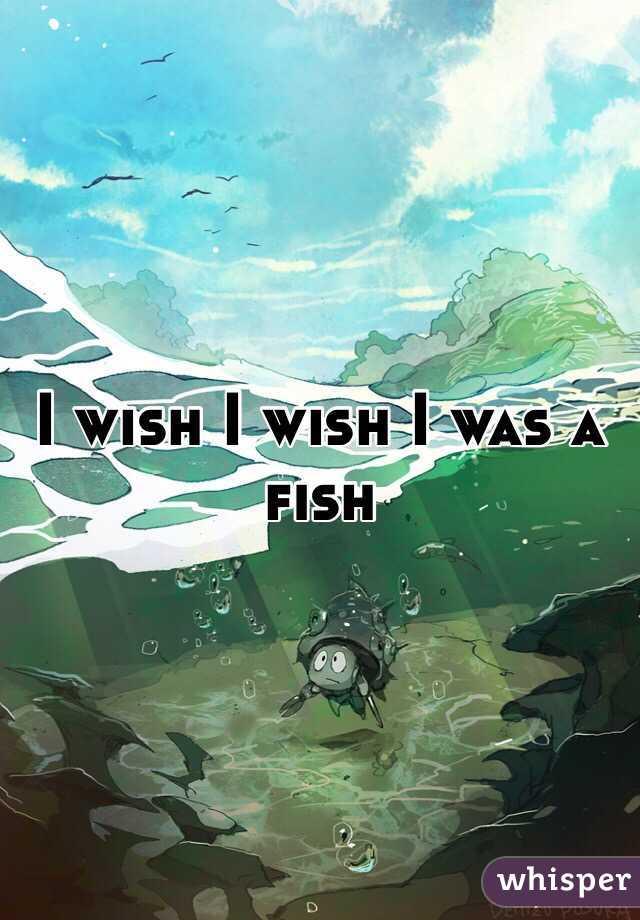 I wish I wish I was a fish