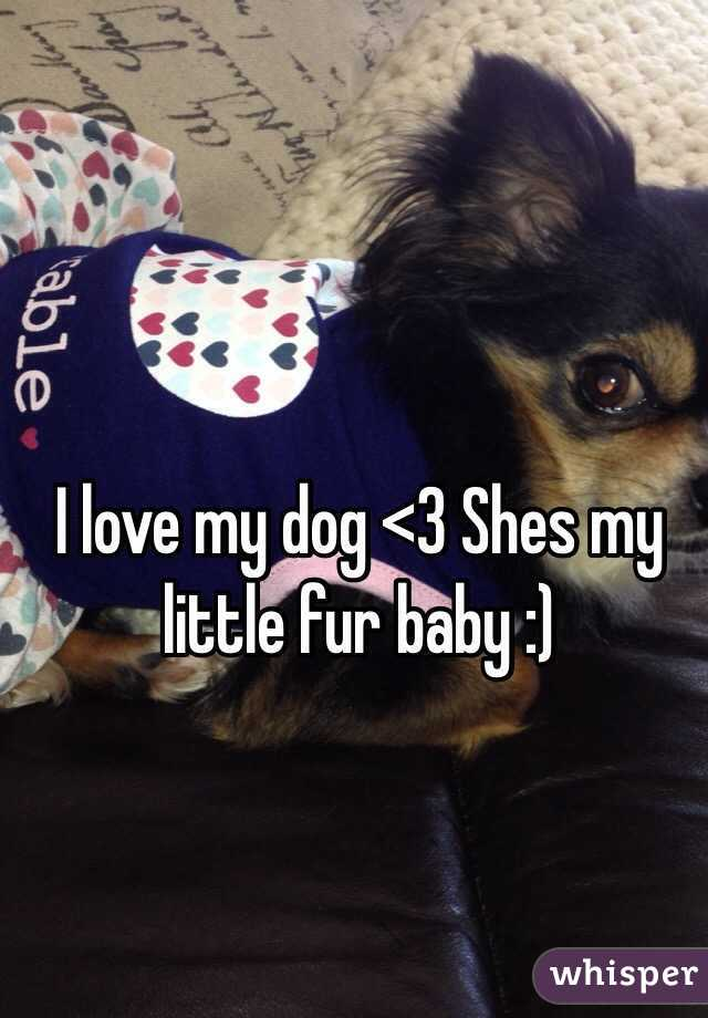 I love my dog <3 Shes my little fur baby :)