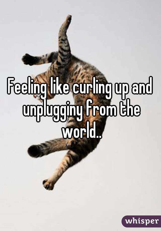 Feeling like curling up and unplugginy from the world..