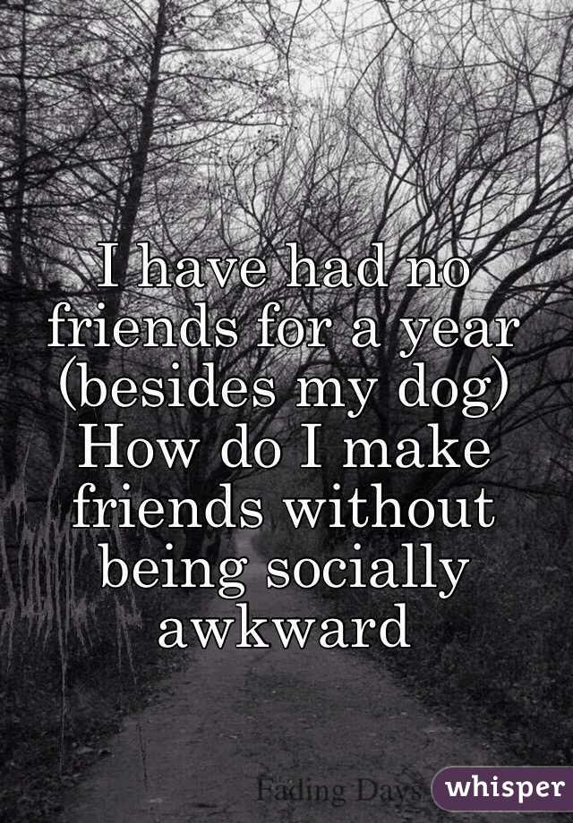 I have had no friends for a year (besides my dog)  How do I make friends without being socially awkward