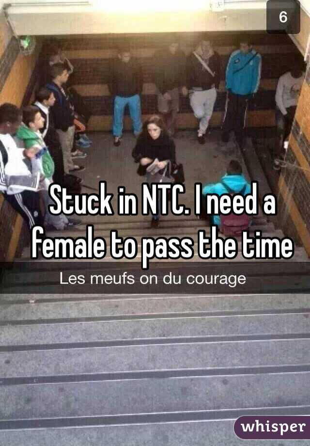 Stuck in NTC. I need a female to pass the time