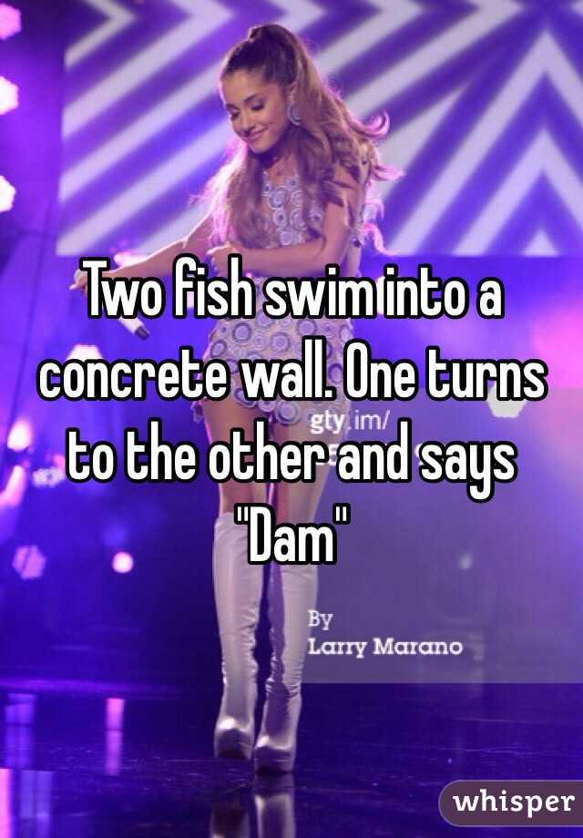 "Two fish swim into a concrete wall. One turns to the other and says ""Dam"""