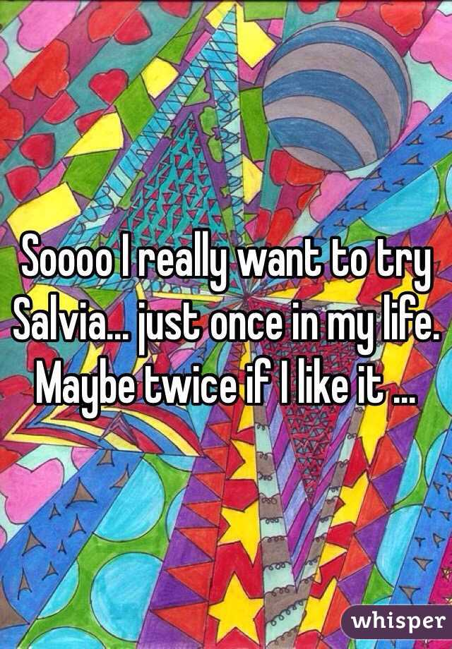 Soooo I really want to try Salvia... just once in my life. Maybe twice if I like it ...