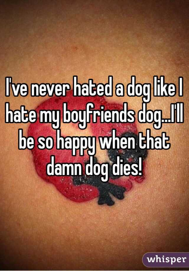 I've never hated a dog like I hate my boyfriends dog...I'll be so happy when that damn dog dies!