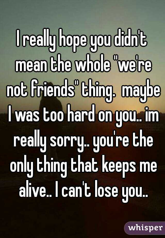 """I really hope you didn't mean the whole """"we're not friends"""" thing.  maybe I was too hard on you.. im really sorry.. you're the only thing that keeps me alive.. I can't lose you.."""