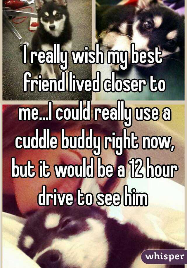 I really wish my best friend lived closer to me...I could really use a cuddle buddy right now, but it would be a 12 hour drive to see him