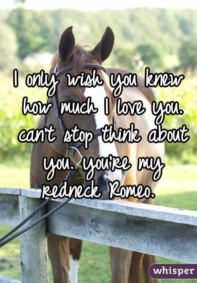 I only wish you knew how much I love you. can't stop think about you. you're my redneck Romeo.