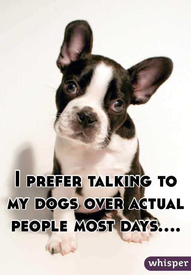I prefer talking to my dogs over actual people most days....