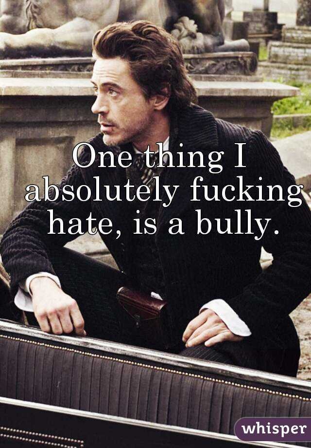 One thing I absolutely fucking hate, is a bully.