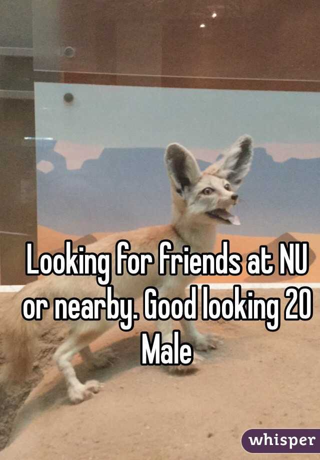 Looking for friends at NU or nearby. Good looking 20 Male