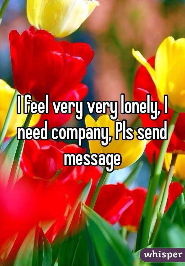 I feel very very lonely, I need company, Pls send message