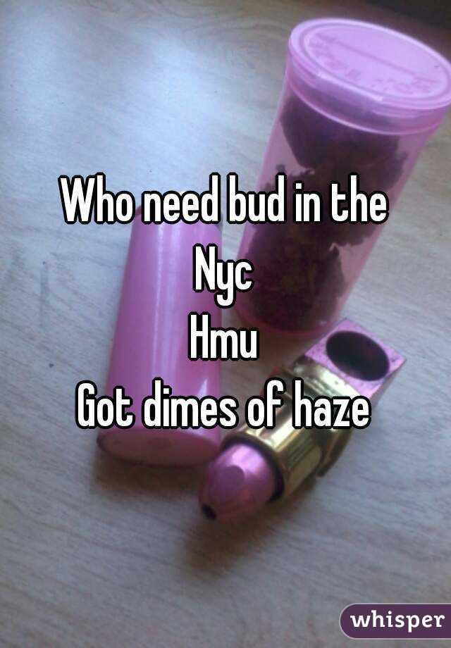 Who need bud in the Nyc Hmu Got dimes of haze