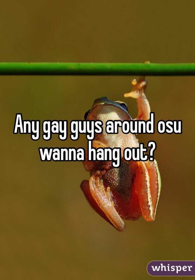 Any gay guys around osu wanna hang out?
