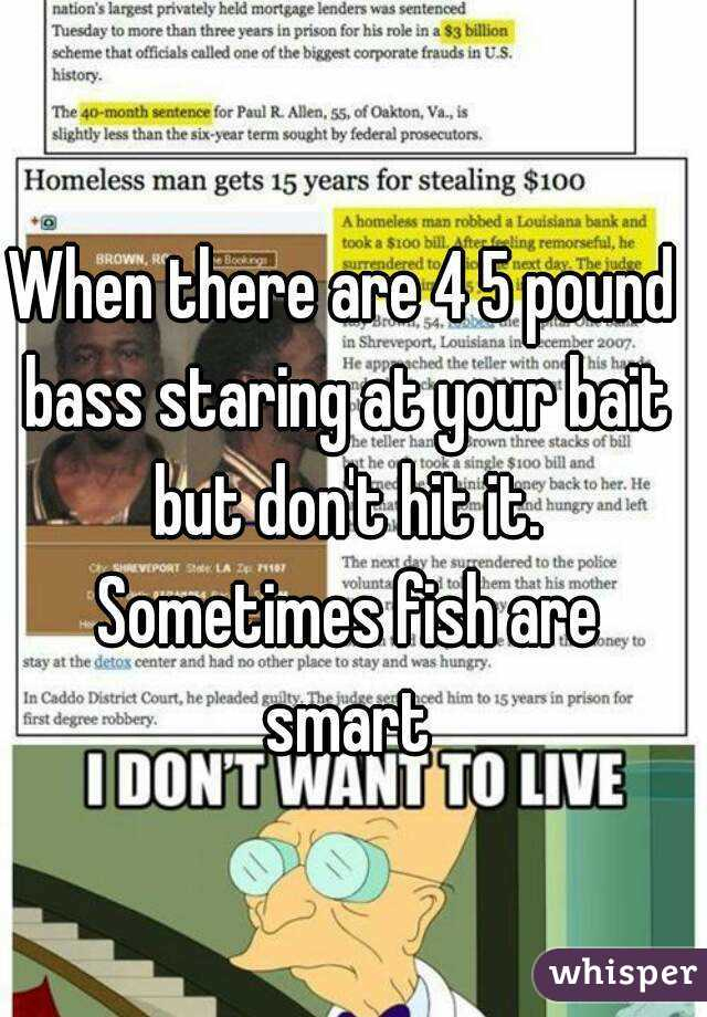 When there are 4 5 pound bass staring at your bait but don't hit it. Sometimes fish are smart