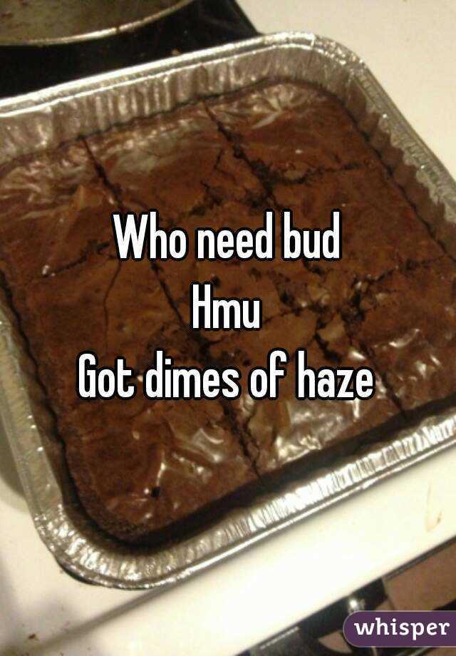 Who need bud Hmu Got dimes of haze