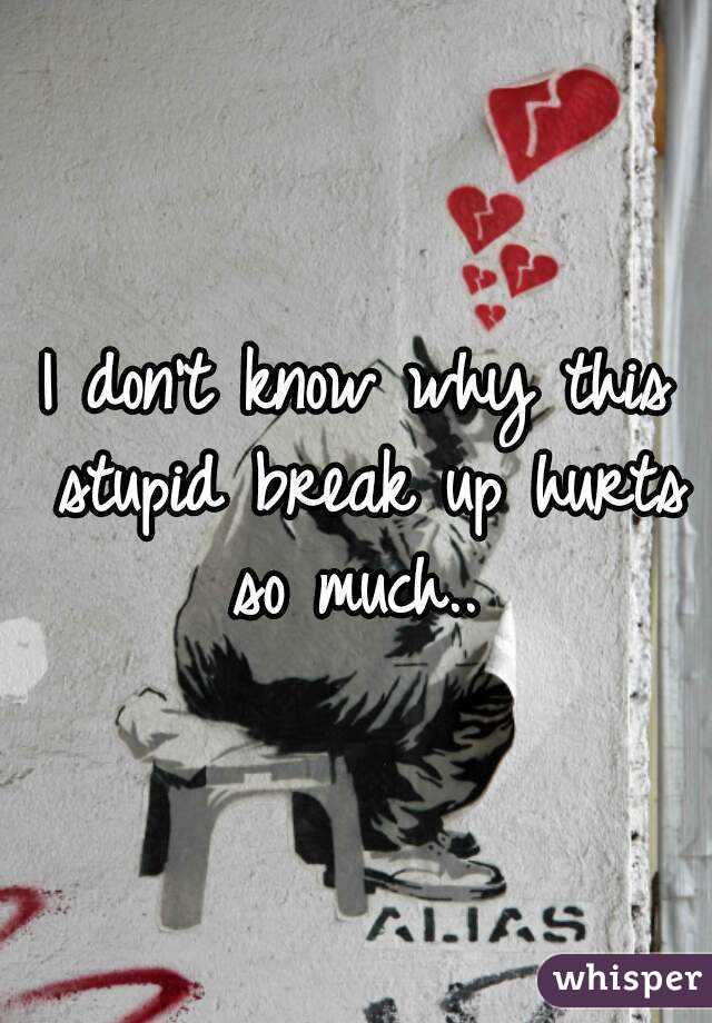 I don't know why this stupid break up hurts so much..