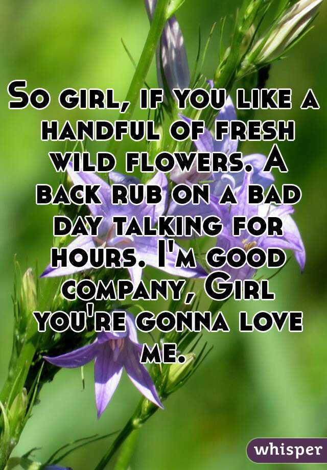 So girl, if you like a handful of fresh wild flowers. A back rub on a bad day talking for hours. I'm good company, Girl you're gonna love me.