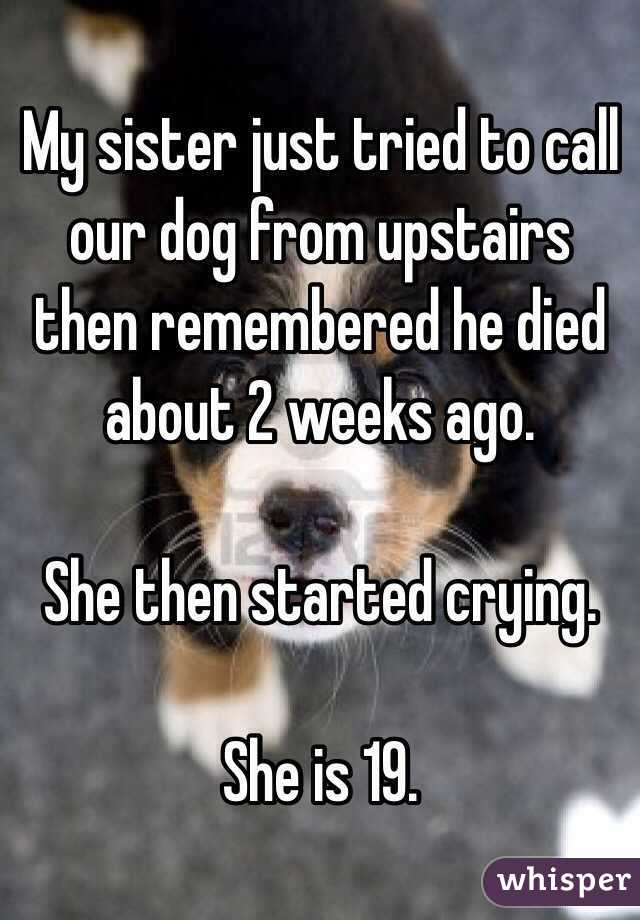 My sister just tried to call our dog from upstairs then remembered he died about 2 weeks ago.  She then started crying.  She is 19.