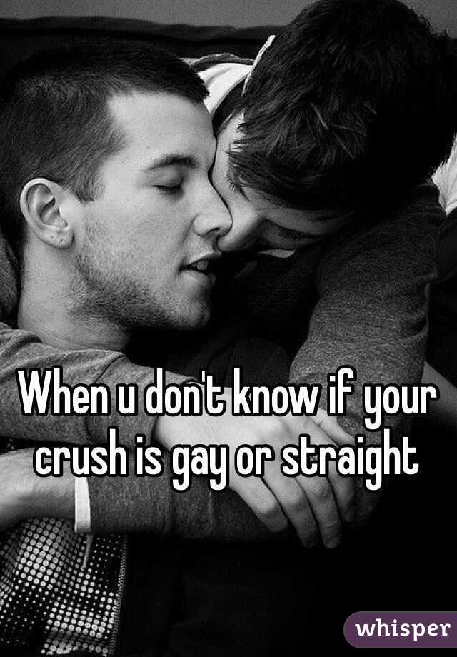 How to know if your crush is gay