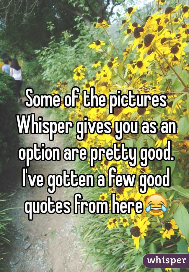 Some of the pictures Whisper gives you as an option are pretty good. I've gotten a few good quotes from here😂