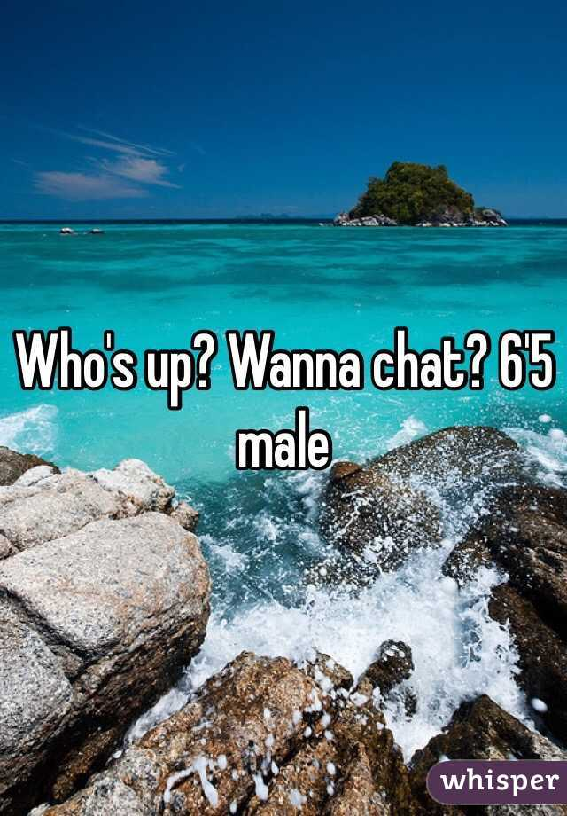 Who's up? Wanna chat? 6'5 male