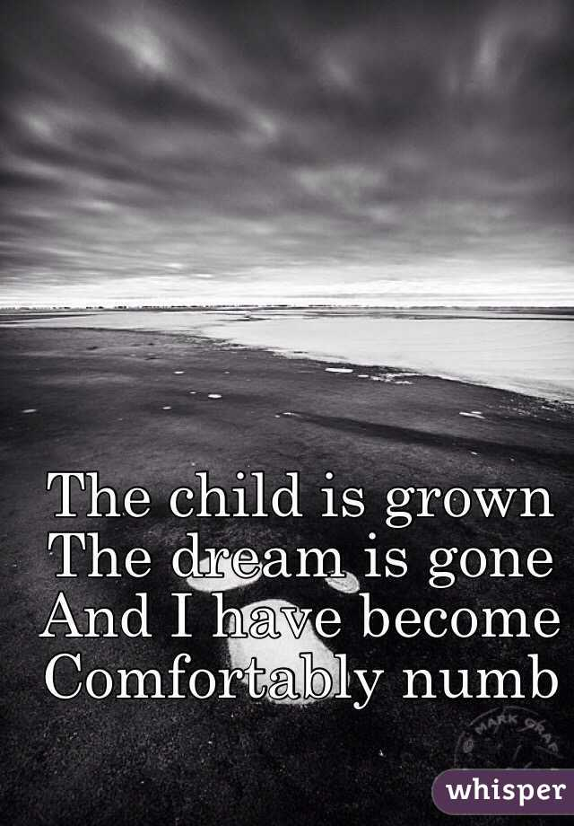 The child is grown  The dream is gone And I have become Comfortably numb