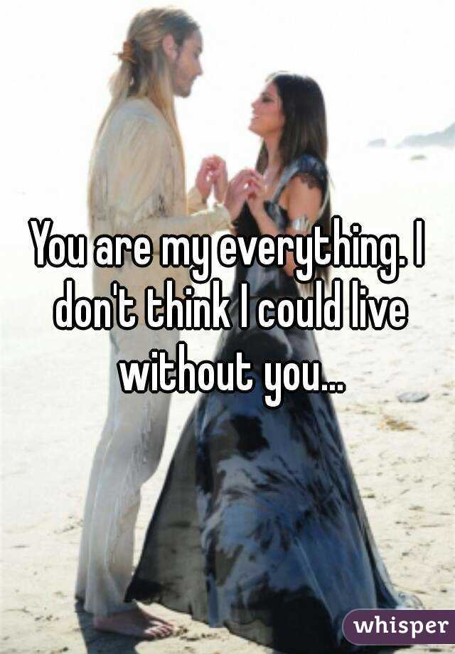 You are my everything. I don't think I could live without you...