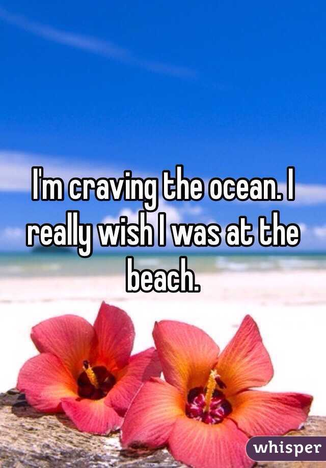 I'm craving the ocean. I really wish I was at the beach.