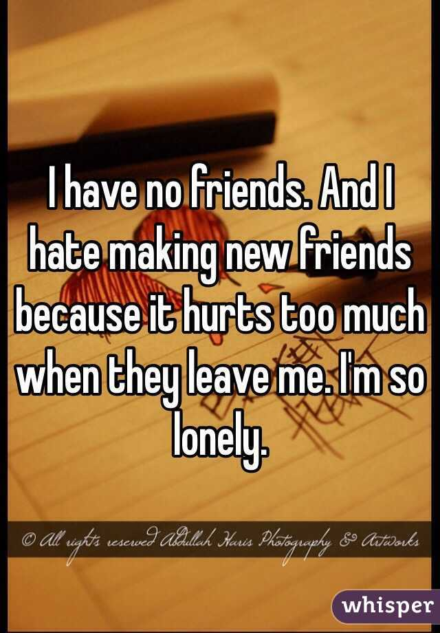 I have no friends. And I hate making new friends because it hurts too much when they leave me. I'm so lonely.
