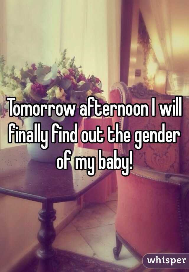 Tomorrow afternoon I will finally find out the gender of my baby!