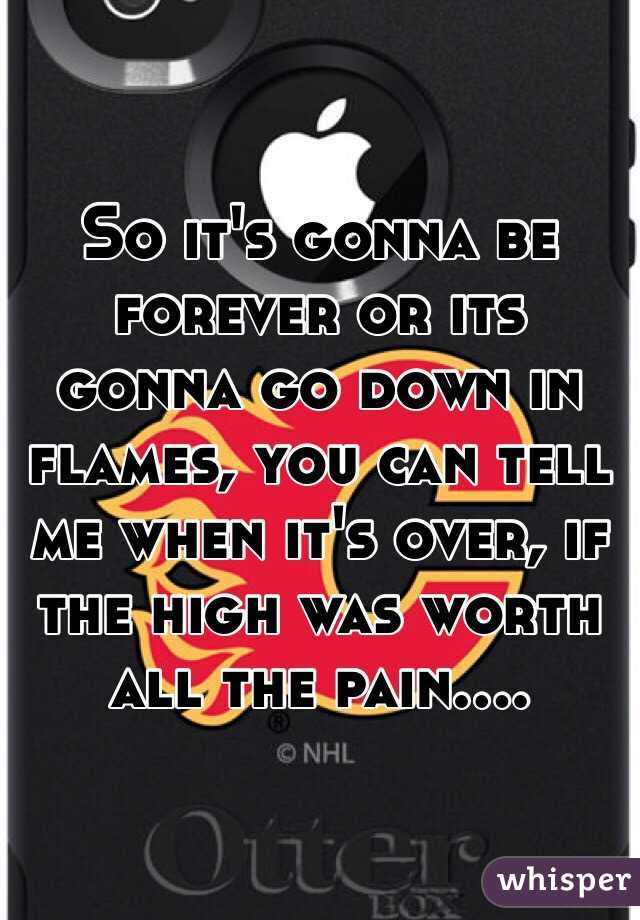 So it's gonna be forever or its gonna go down in flames, you can tell me when it's over, if the high was worth all the pain....